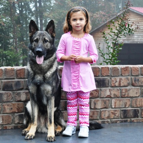 Family Trained German Shepherds | Dogs with Kids
